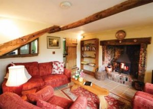 COTTAGE-WITH-LOG-BURNER