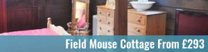 Field-Mouse-Cottage-Halesworth